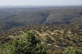 Dehesa-landskaber  dækker 50% af Extremadura
