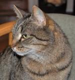 Gogo- 14 years old