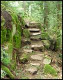 John Dean Provincial Park 2 - Slektain/Montfort Trails