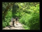 Mt. Douglas Park: Chapter 2