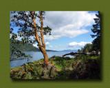 Gowlland Tod Provincial Park: McKenzie Bight Trail: Chapter 2