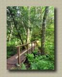 Durrance Lake Trail