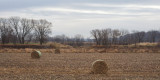 Bales by the Maquoketa