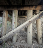Trestle Timbers