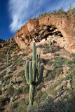 Ruins at Tonto National Monument