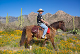 Horseback Rider at Catalina State Park