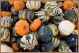 Marché Atwater en automne