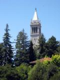 View of the Campanile from the Club