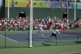 Federer practice