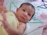 Baby Emma Born December 10, 2007 - Congratulations Ben & Lindsey