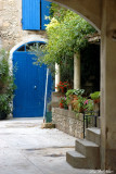 blue door and garden