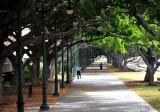 Ala Wai River Park, Honolulu, Oahu,Hawaii