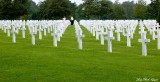 Searching for Relative, Normanday American Cemetery