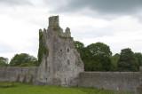 Kells Priory, County Kilkenny (3185)