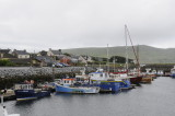 The harbor at Dingle, County Kerry (3280)