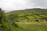 In case you were wondering why green is Ireland's national color (3320)