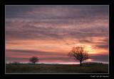 7916 sunset Dutch landscape in wintertime