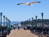 Walking San Francisco 's Embarcadero Promenade