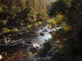 From Yosemite View Lodge balcony #2915