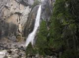 Lower Yosemite Falls, March. SX.. #2296