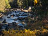 Merced River.  #2674