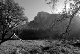 Half Dome from Cook's Meadow. (Learning to work in b&w) #2763bw