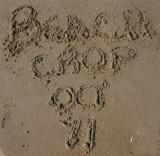 Fall Beach Crop in Sandbridge