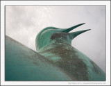 Tern Sculpture