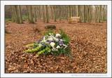 A Woodland Burial