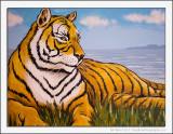 Scottish Tiger