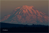 Mt. Rainer (Sunset)