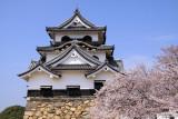 Hikone-jō 彦根城