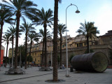 Palm trees at the Porto Antico
