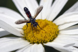 07/24/2011 - _MG_2690.jpg