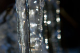 01/22/2012 - _MG_4976.jpg
