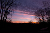 03/12/2012 - IMG_2382.jpg
