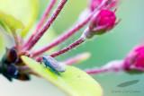 04/15/2012 - _MG_5594.jpg