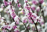 04/23/2012 - _MG_5633.jpg