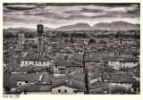 Lucca - Sky Line