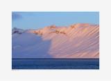 Isfjord - Alkhornet - Alpenglow