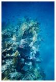 Under Water - VII