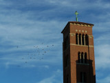 Birds and church tower