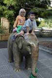 Zoo - May 2011