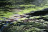 natural_blurs