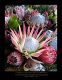 Flowers for sale - OAHU
