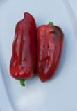 ripening red