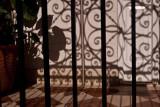 Ironwork Shadows