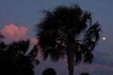 Moon at Sunset in Charleston
