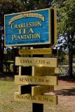 Charleston Tea Plantation (84)