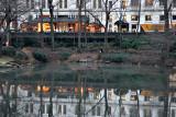 The Plaza Reflection